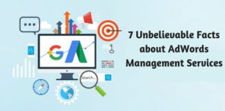 7 Unbelievable Facts about AdWords Management Services