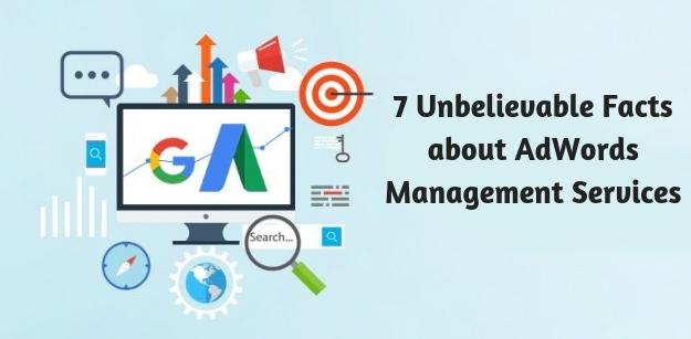 7 Unbelievable Facts about AdWords Management Services