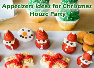 Appetizers ideas for Christmas House Party