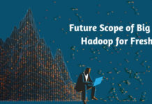 Future Scope of Big Data Hadoop for Fresher