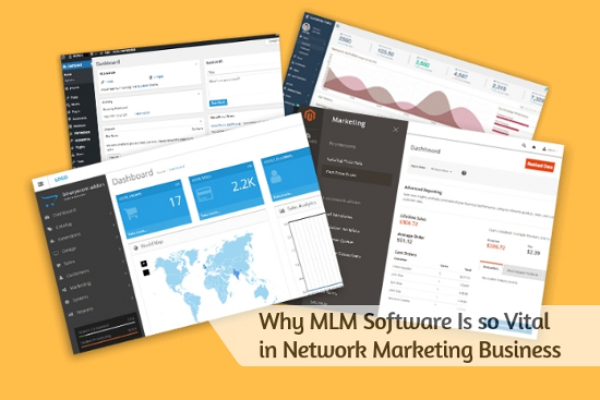 Why MLM Software Is so Vital in Network Marketing Business