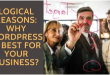 Logical Reasons- Why WordPress is Best for Your Business