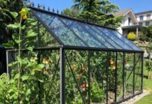 How to Have a Small Apartment Greenhouse?