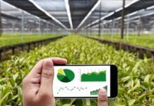 Farm Management Solution for Moving Agriculture to a Digital Platform