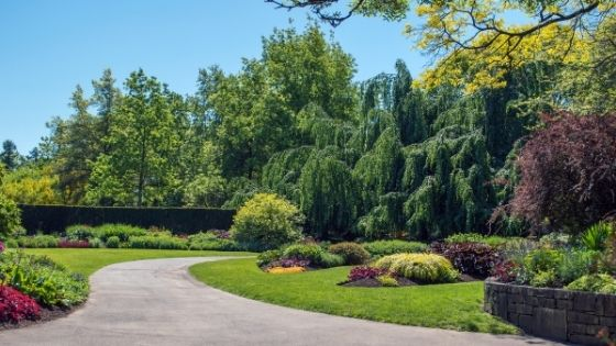 5 Questions to Ask Yourself Before Starting your Landscaping Project