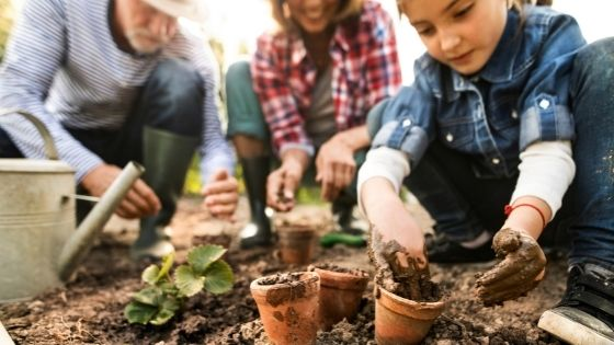 Home Gardening as a Rewarding Hobby