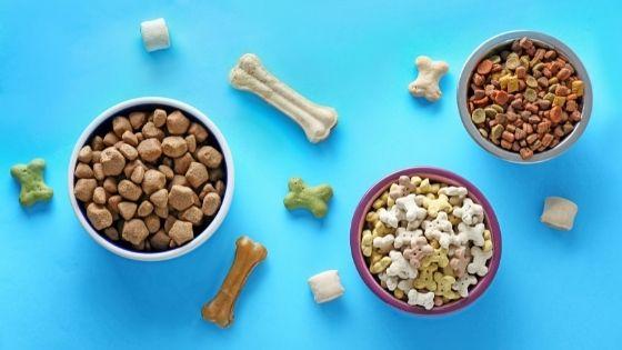 5 Tips in Choosing The Best Pet Food in Singapore