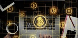 Bitcoin or Esports - Investment Strategy
