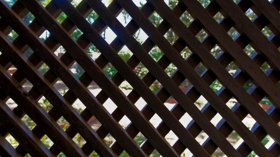 Here's Why Composite Garden Screens Are A Welcome Addition to Any Garden